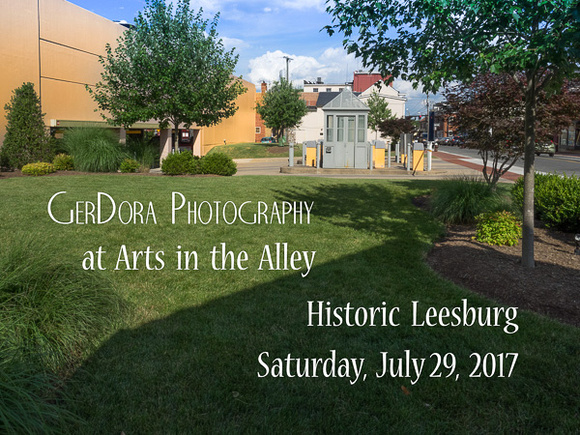 GerDora Photography at Arts in the Alley, Leesburg