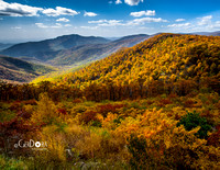 October - Shenandoah National Park